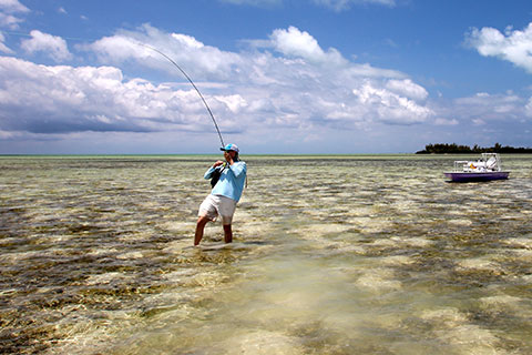 The-Abaco-Club-Fishing-Experience-04